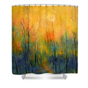 The Path To Forever Shower Curtain