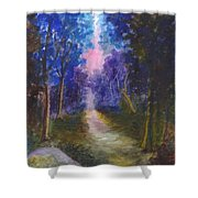 The Path Up Yonder Shower Curtain
