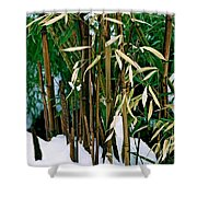 The Patience Of Bamboo Shower Curtain