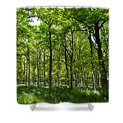 The Peaceful Forest  Shower Curtain