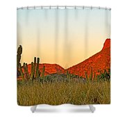 The Peak And Cardon Cacti In The Sunset In San Carlos-sonora Shower Curtain