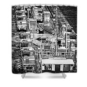 The Pecking Order Monochrome Shower Curtain