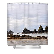 The Perfect Light Shower Curtain