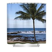 The Perfect Palm Tree - Sunset Beach Oahu Hawaii Shower Curtain