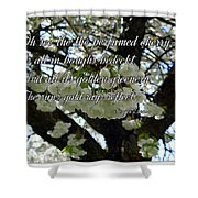 The Perfumed Cherry Tree 2 Shower Curtain