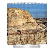 The Petrified Log Shower Curtain
