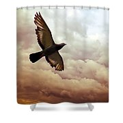 The Pigeon Shower Curtain
