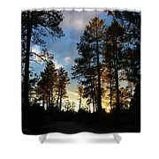 The Pines At Sunset Shower Curtain