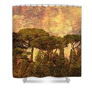 The Pines Of Rome Shower Curtain