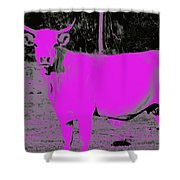 the Pink Cow Shower Curtain