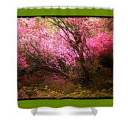 The Pink Forest Shower Curtain