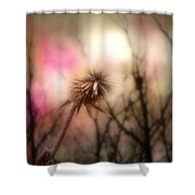 The Pink Light Shower Curtain
