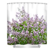 The Pink Of Spring - Featured 2 Shower Curtain