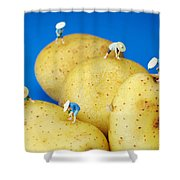 The Planting On Potatoes Little People On Food Shower Curtain