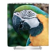The Poetry Of Nature Shower Curtain