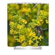 The Pollinator Shower Curtain