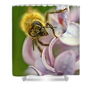 The Pollinator Shower Curtain