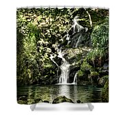 The Pond And The Forest Waterfall Shower Curtain