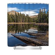 The Pond At Dana Meadow Shower Curtain
