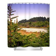 The Pond In The Forest Shower Curtain