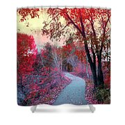 The Pondering Path Shower Curtain