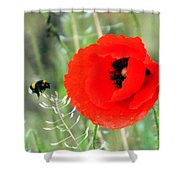The Poppy And The Bee Shower Curtain