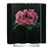 The Poppy Shower Curtain