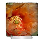 The Prickly Pear World Shower Curtain