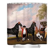 The Prince Of Wales Phaeton Shower Curtain