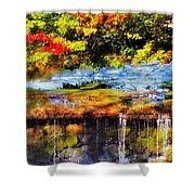 The Private Little Pond Shower Curtain