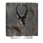 The Pronghorn 2 Dry Brushed Shower Curtain