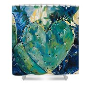 The Protected Heart Shower Curtain