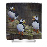 The Puffin Report Shower Curtain