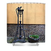 The Pump At St Goar Am Rhein Shower Curtain