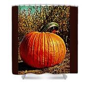 The Pumpkin Shower Curtain