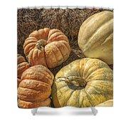 The Pumpkins Of Autumn Shower Curtain