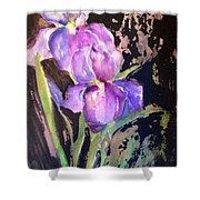 The Purple Iris Shower Curtain