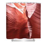 The Purple Passage Shower Curtain
