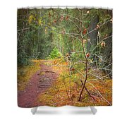 The Quiet Path Shower Curtain