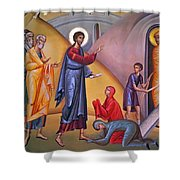 the raising of Lazarus from the dead Shower Curtain