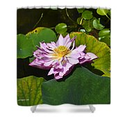 The Really Fancy Bloom Shower Curtain