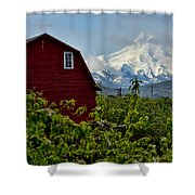 The Red Barn And Mt. Hood Shower Curtain
