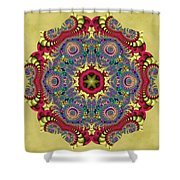 The Red Dragon Shower Curtain