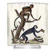 The Red Howler Monkey Shower Curtain