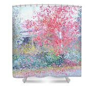 The Red Japanese Maple Tree Shower Curtain