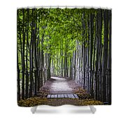 The Red Maple Allee Shower Curtain
