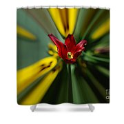 The Red Poppy Shower Curtain