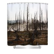 The Remainder Shower Curtain