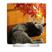 The Restful Leaves If Fall Shower Curtain