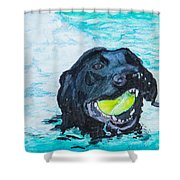The Retrieve Shower Curtain by Roger Wedegis